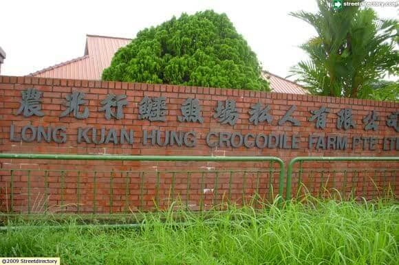 Crocodile Farm in Singapore